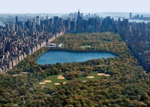 Central-Park-Picture