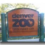 denver-zoo