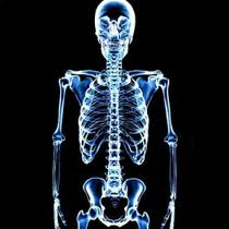 The xray was invented this week in 1895