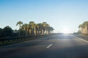 florida car hire
