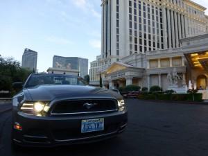 Adrain Devine Mustang